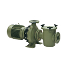 Astral Aral C-1500 Pump 4 HP 3 Phase