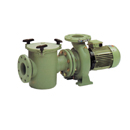 Astral Aral C-3000 Pump 4HP 3 Phase